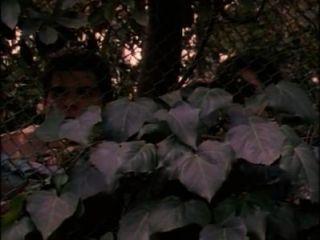 比基尼交通學校完整電影(1997)