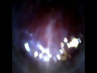 看看我的公雞內窺鏡與試管引入凸輪深入迪克