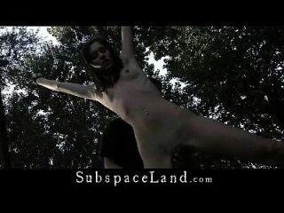 户外绑长毛茸茸的裸露臀部臀部