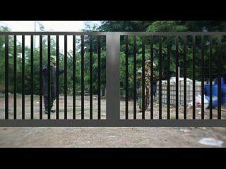 gthai电影15侏罗纪色情部分1