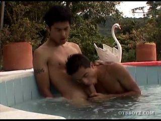 年轻的拉丁裔他妈的无背在游泳池