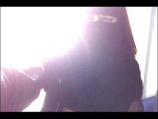 我的猫在niqab