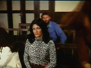 gangbang im gerichtssaal(kasimir der kuckuckskleber,1977)