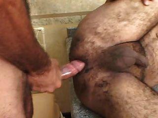巴西胖胖的熊採取硬迪克里面