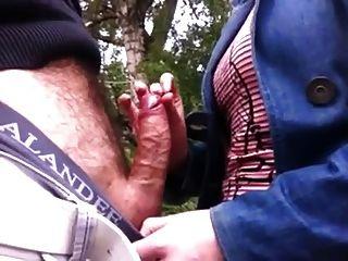 觸摸迪克在公園