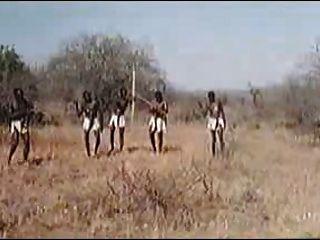 非洲巨大的陰莖!