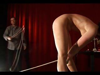 苗條的腿和長的鞭子