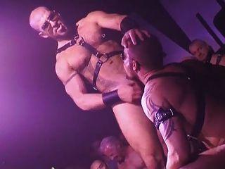 同性戀濕和粗暴的活性顯示
