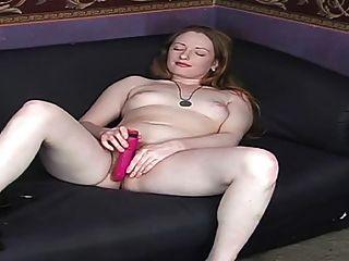 真正的紅發毛茸茸的紅色的貓粉紅色的山雀蒼白的皮膚2