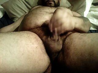 未切割熊大毛腹部