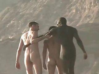在海灘的赤裸人