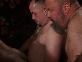 爸爸熊性交性交