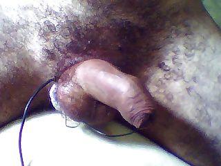 電子陰莖和未收縮的包皮