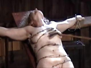 栓與鐵絲網,碾碎軟的山雀和貓肉