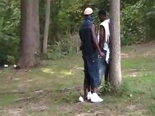 黑妓女在公園狂歡。