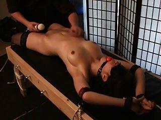 女孩綁和做與暨與振動器