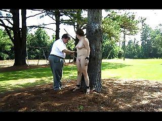 neva被栓對一棵樹在後院