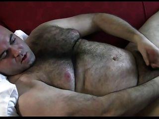熊與大美麗的屁股