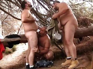毛茸茸的熊3some在樹林裡
