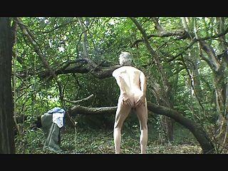 一條,手杖和暨在樹林裡