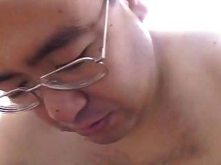 日本爸爸熊