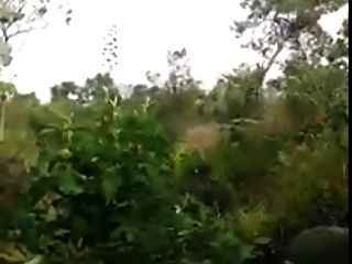 str8西班牙混亂在公共森林裡