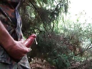 str8爸爸暨在森林裡