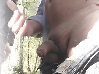 在一個陌生人在樹林裡
