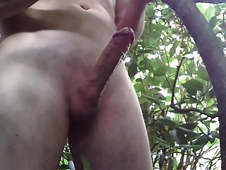 wanking和cumming在森林。