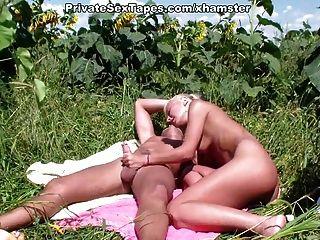 少年夫婦真正的激情在向日葵的領域