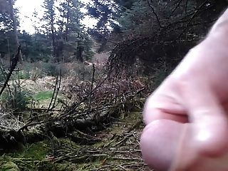 赤裸在樹林裡2