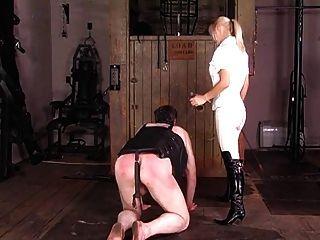 精美的英国骑马女主人训练她的小马