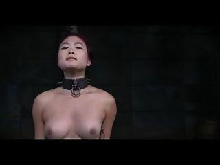 乳房鞭打中国美国人
