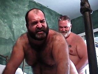 chubbys..gordos peludos