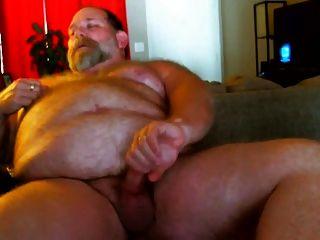 胖胖的爸爸熊