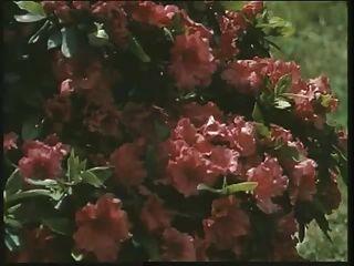 经典的英国荡妇巡游在花园里搞砸了