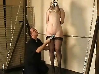 挂在她的山雀