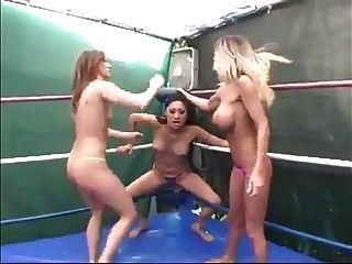 三只猫扭转讨厌的女人摔跤wf