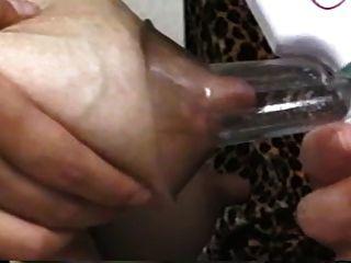 真正的亚洲牛奶袋(大山雀)