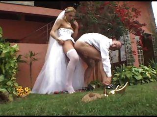 热烈的婚礼与性感的人妖alessandra vendraminy